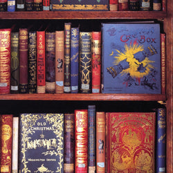 Bodleian Christmas Bookshelves Wrapping Paper