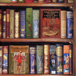 Bodleian Sports & Hobbies Bookshelves Wrapping Paper