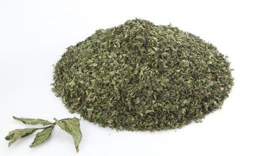 Dried Mint Leaves 4OZ