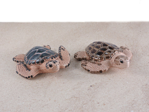 Ceramic Sea Turtle - Green & Loggerhead - Set of 2