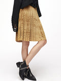 Gold Pleated Velvet Skirt