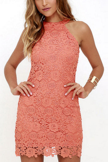 Pink Full Lace Detail Halter Neck Zip Back Mini Dress