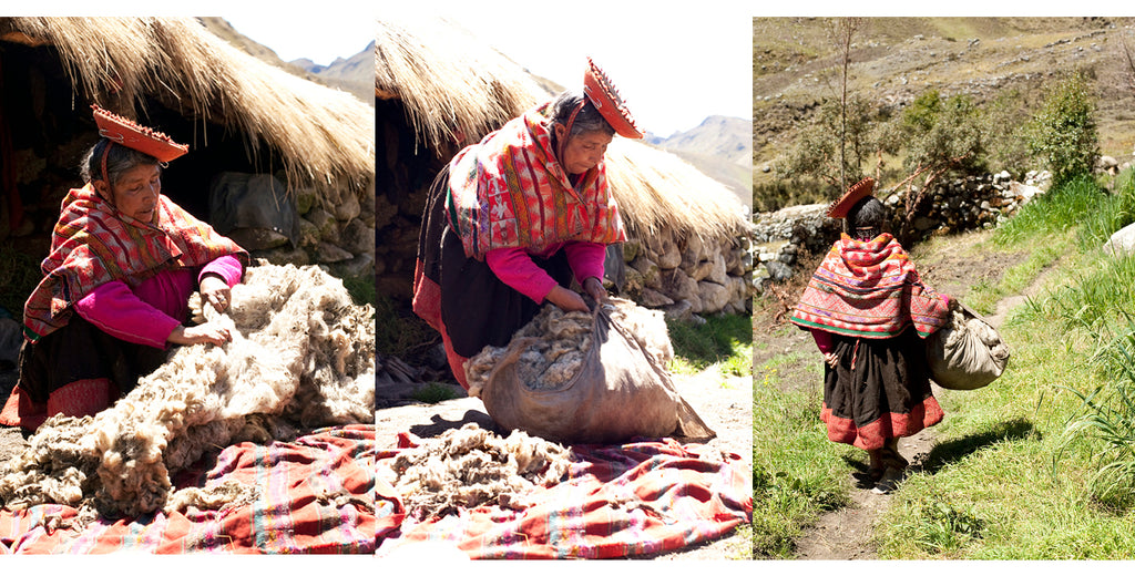 Preparing alpaca fleece to take to market in Peru