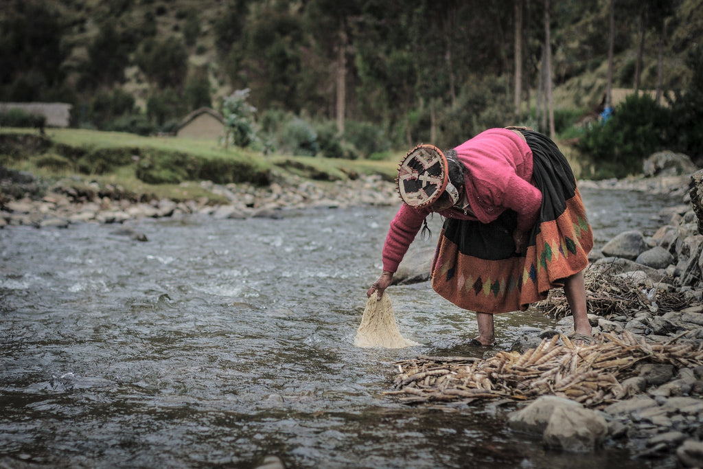 Peruvian artisan washing yarn in stream