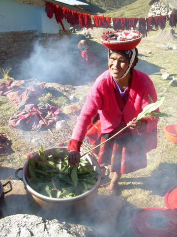 LATA is supporting native plant dying workshops, such as this one in Chupani. (photo by A.Haigler)