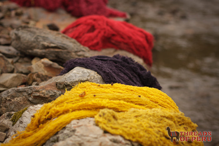 Yellow, purple, and red wools lie by a riverside to dry during the workshop