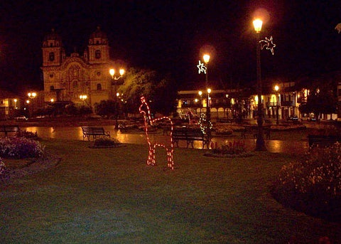 The Plaza at night, lit up with the Christmas decorations!