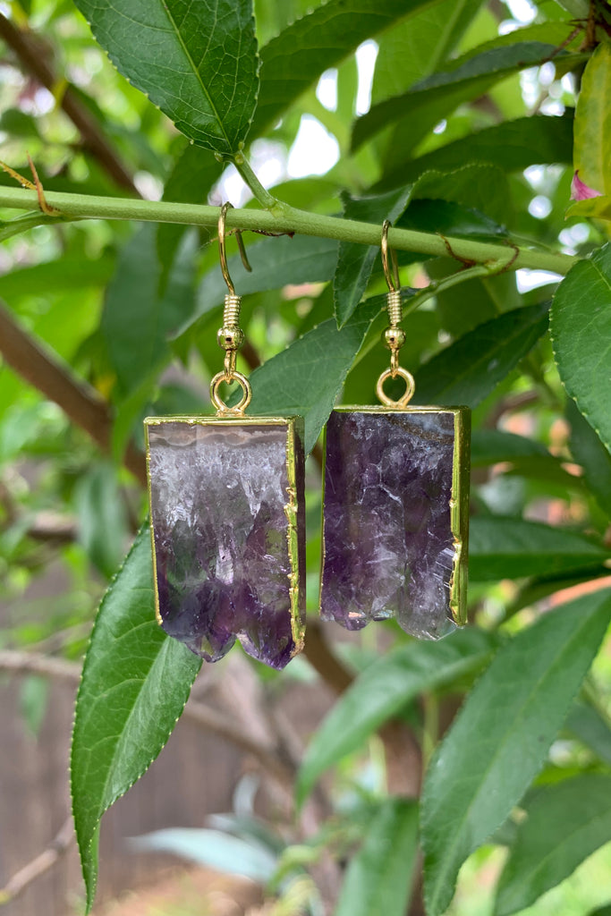 Amethyst Earrings #H1044