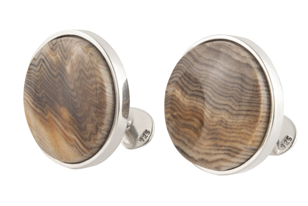 Sequoia wood fossil