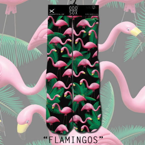 Odd Sox Flamingos Socks