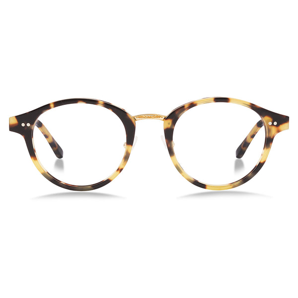 Bailey Nelson Frederique / Wild Tortoise Optical Glasses