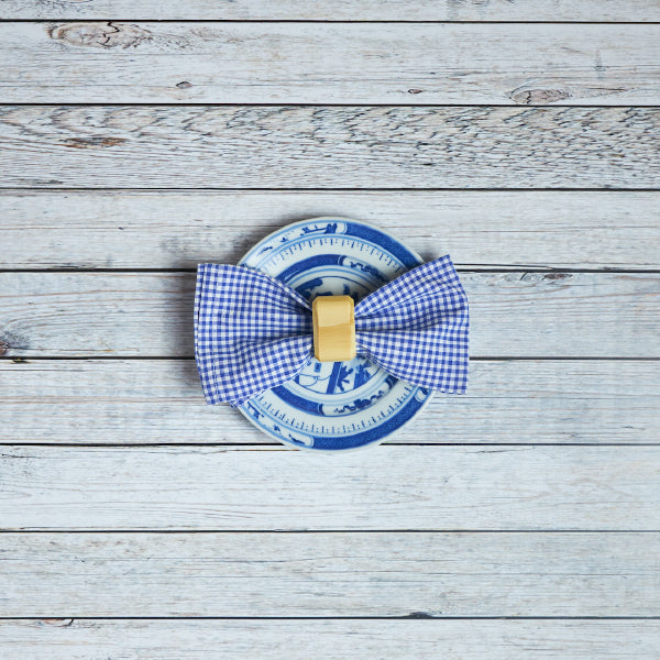 Napkin Set - Blue gingham