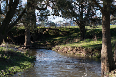 Nundle Creek after rain
