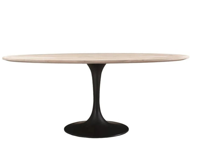 Canmore Oval Dining Table - White Wash with Metal Base