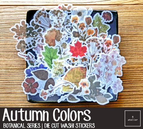 Autumn Colors | Die Cut Washi Stickers