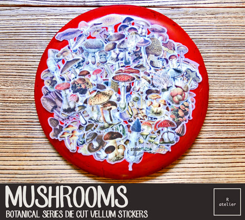 Mushrooms | Die Cut Vellum Stickers