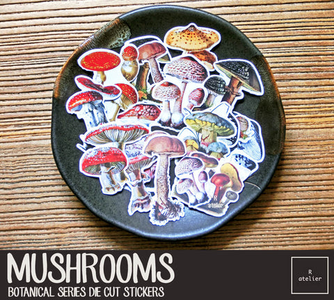 Mushrooms | Die Cut Stickers