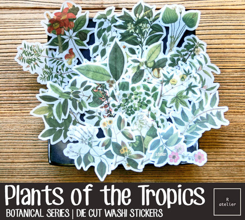Plants of the Tropics | Die Cut Washi Stickers