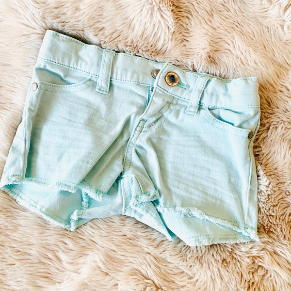 Destash - Country Road  - size 2 - EUC Mint Shorts