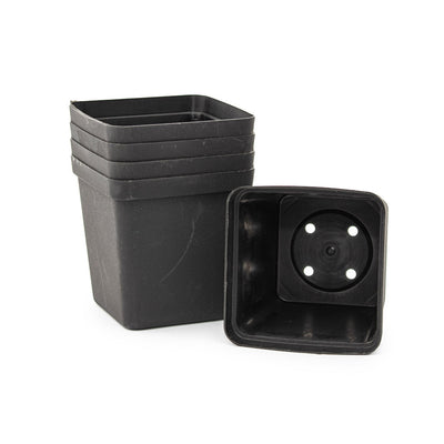 Square Plastic Pot, Black, 9cm -  5Pc Bulk Purchase. 9cm BLACK plastic square pot - Plastics