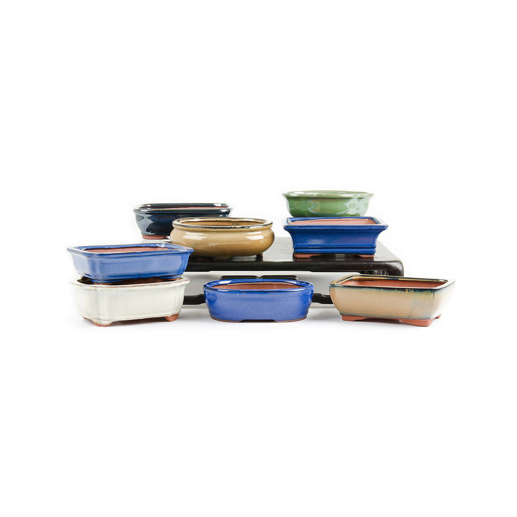 "Assorted Glazed Bonsai Pots, 7"" -   - Pots"