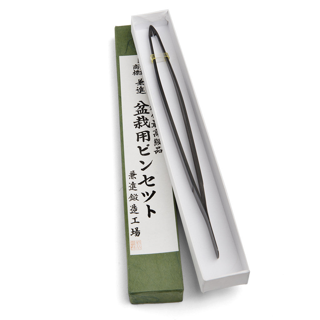 Kaneshin Bonsai Tweezers for pines -   - Tools