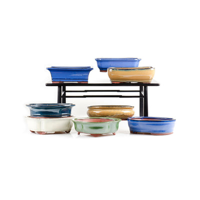 "Assorted Glazed Bonsai Pots, 10"" -   - Pots"