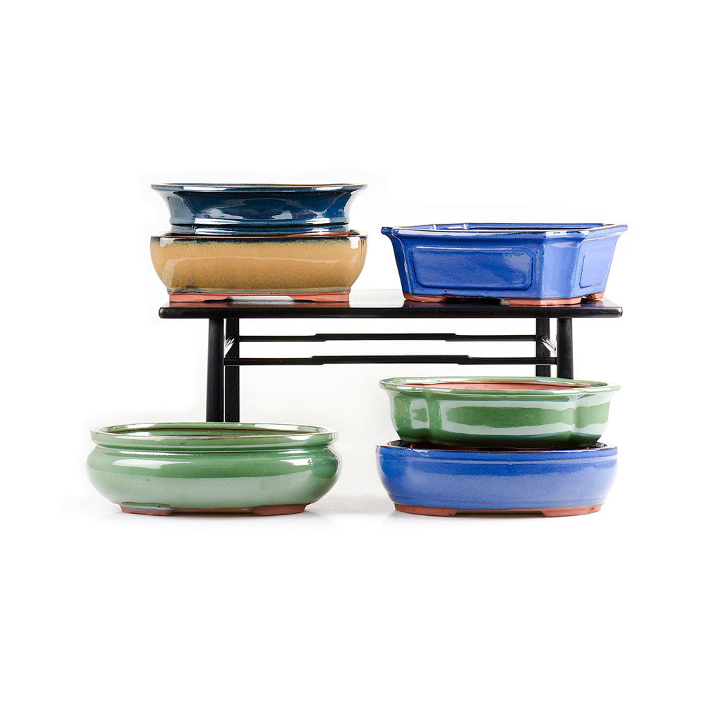 "Assorted Glazed Bonsai Pots, 12"" -   - Pots"