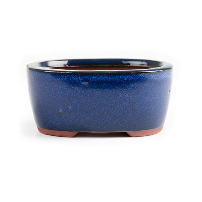 "Assorted Glazed Bonsai Pots, 5"" -  Navy Blue Oval, 12 x 9 x 5.5cm - Pots"