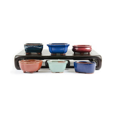 "Assorted Glazed Bonsai Pots, 5"" -   - Pots"