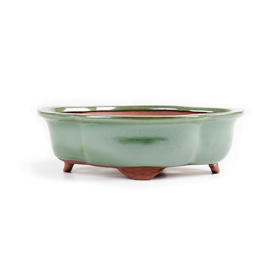 "Assorted Glazed Bonsai Pots, 10"" -  Green Floriated, 23.5 x 19 x 8cm - Pots"