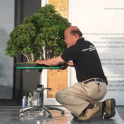 Green T Professional Hydraulic Lift Bonsai Turntable -   - Gardening Accessories