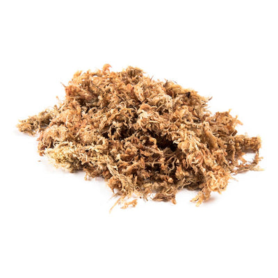 Sphagnum Moss, rehydrated -  5L bag Sphagnum Moss - Growing Mediums
