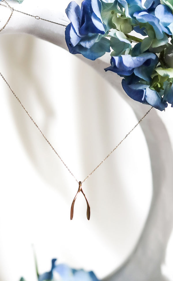 DANIELLE'S WiSHBONE Necklace