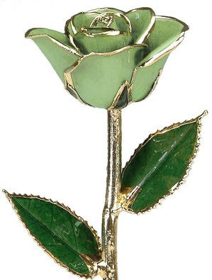 Light Green 24KT Gold Dipped Rose Made in USA - Giu Giu Boutique