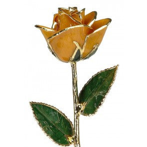 Orange 24KT Gold Dipped Rose Made in USA - Giu Giu Boutique  - 1