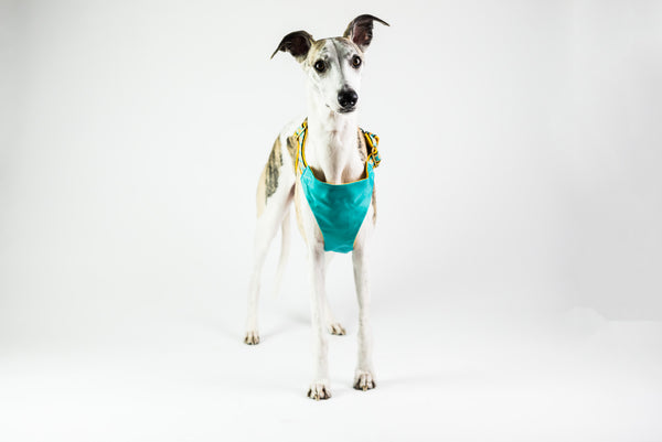 LT-Dog Harness for Car in Pineapple Print- Cooling not Pulling