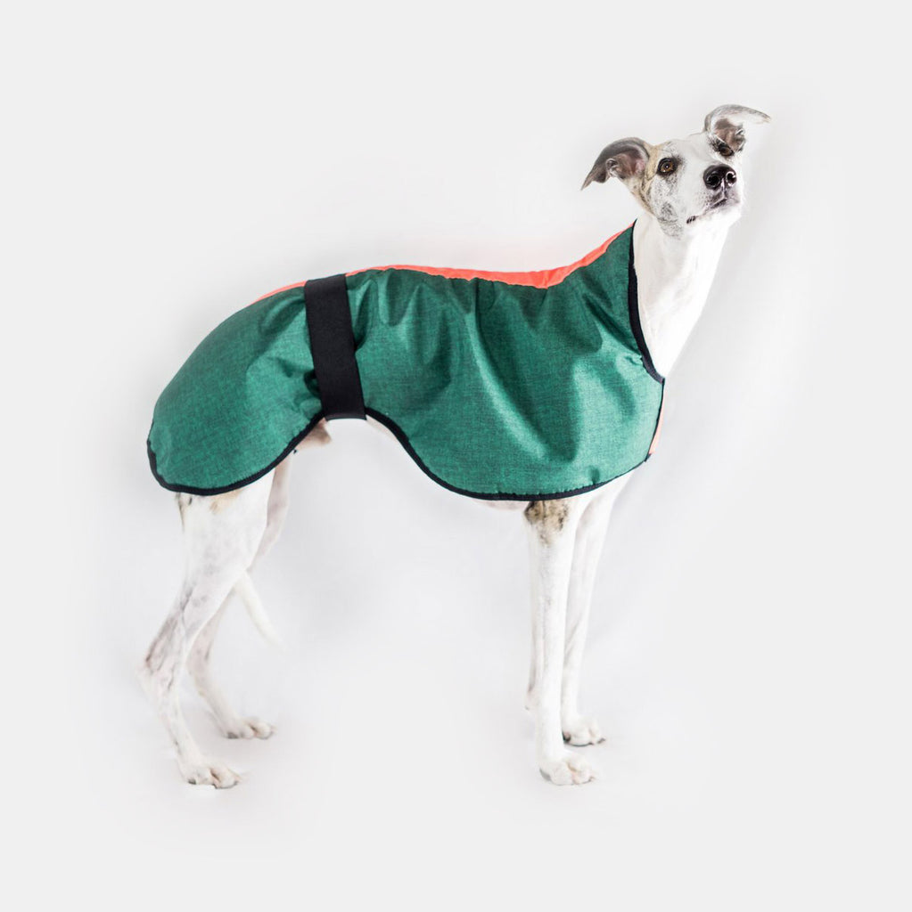 Dogsnug winter waterproof dog coat with lining