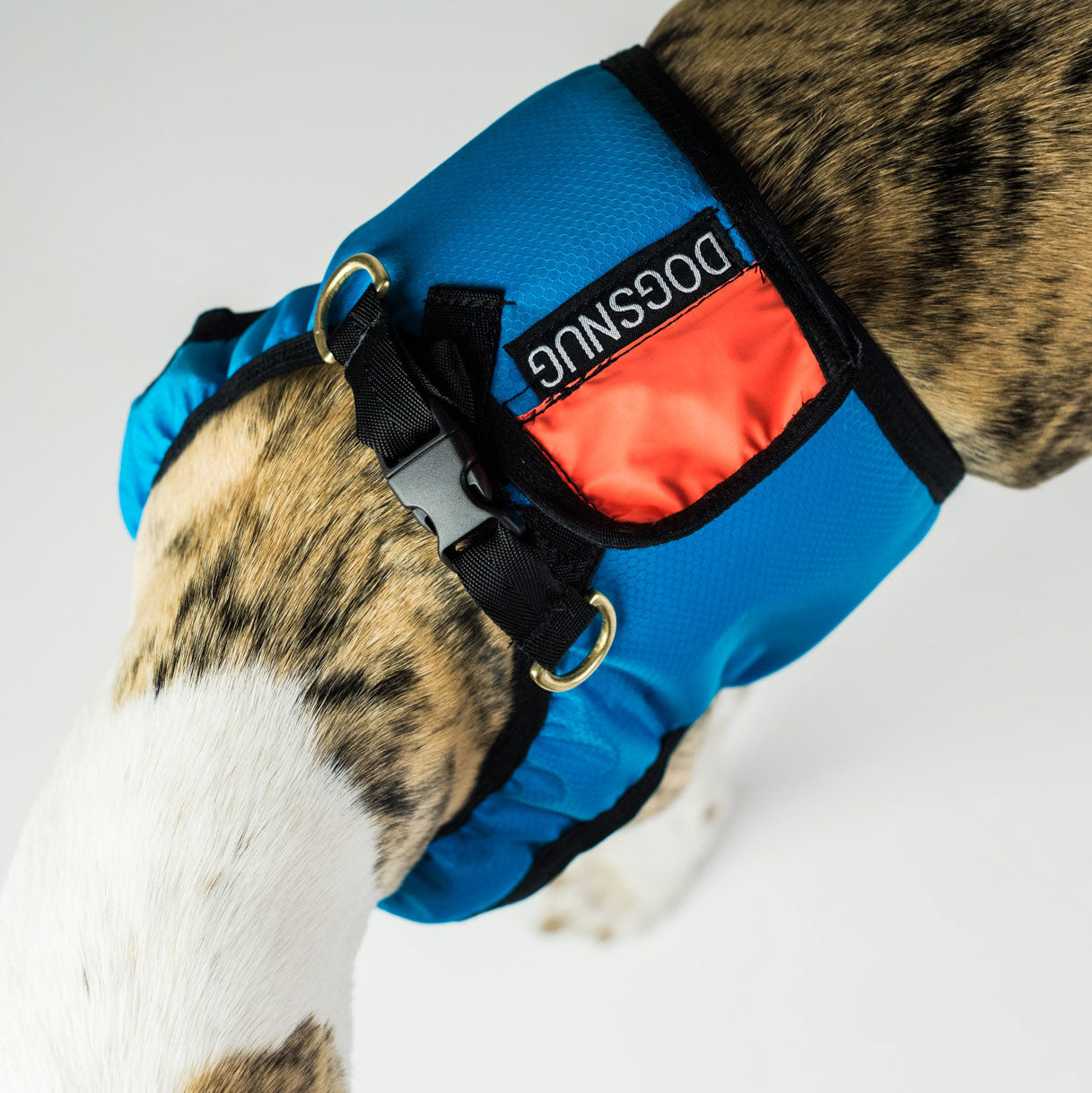 Dog Harness Step-In in Sky Blue