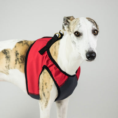 Dog Harness Step-In in Red