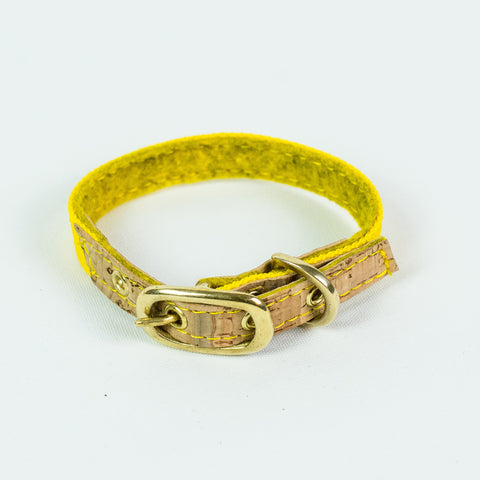 Ray of Sunshine Dog Collar