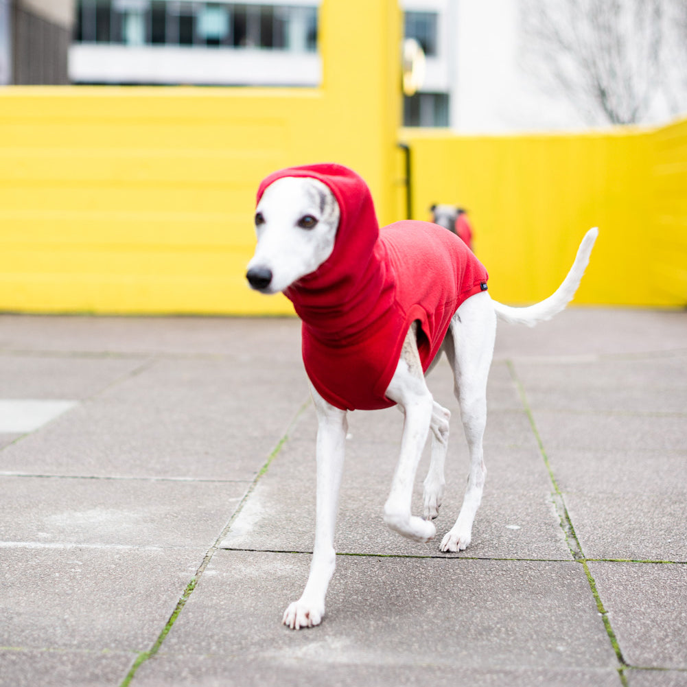 Fleece Dog Jumper Plain – Passion Red