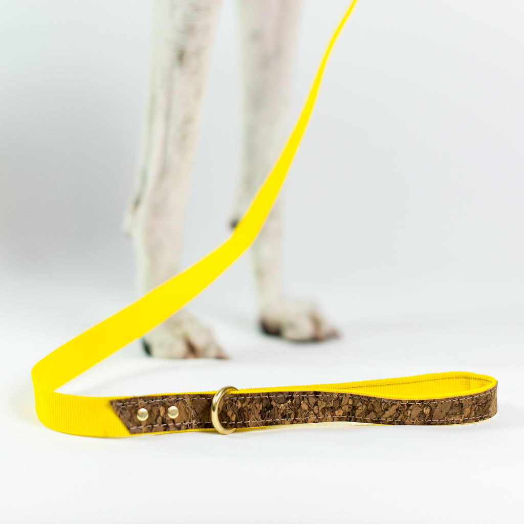 Ray of Sunshine Dog Lead