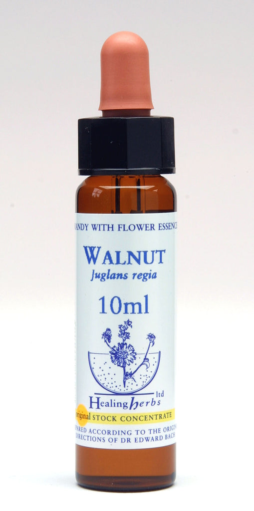 Healing Herbs Essence - Walnut by Healing Herbs