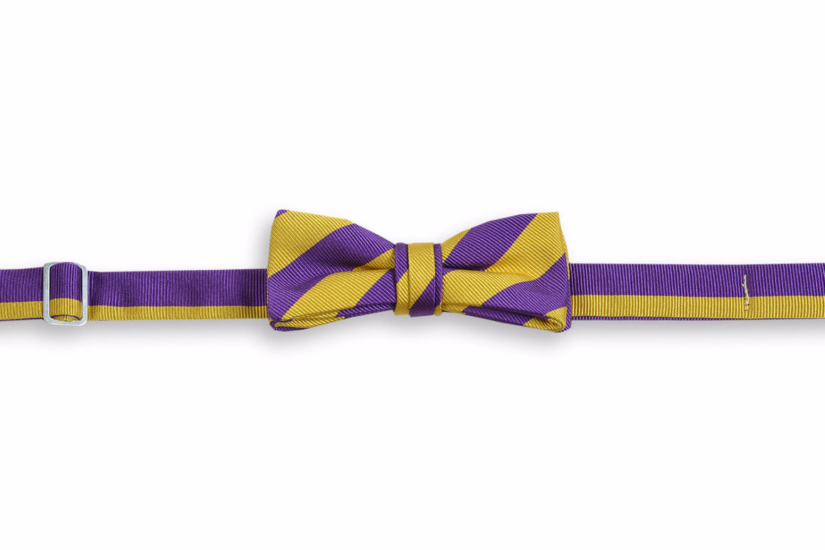 All American Stripe Boy's Bow Tie - Purple and Gold