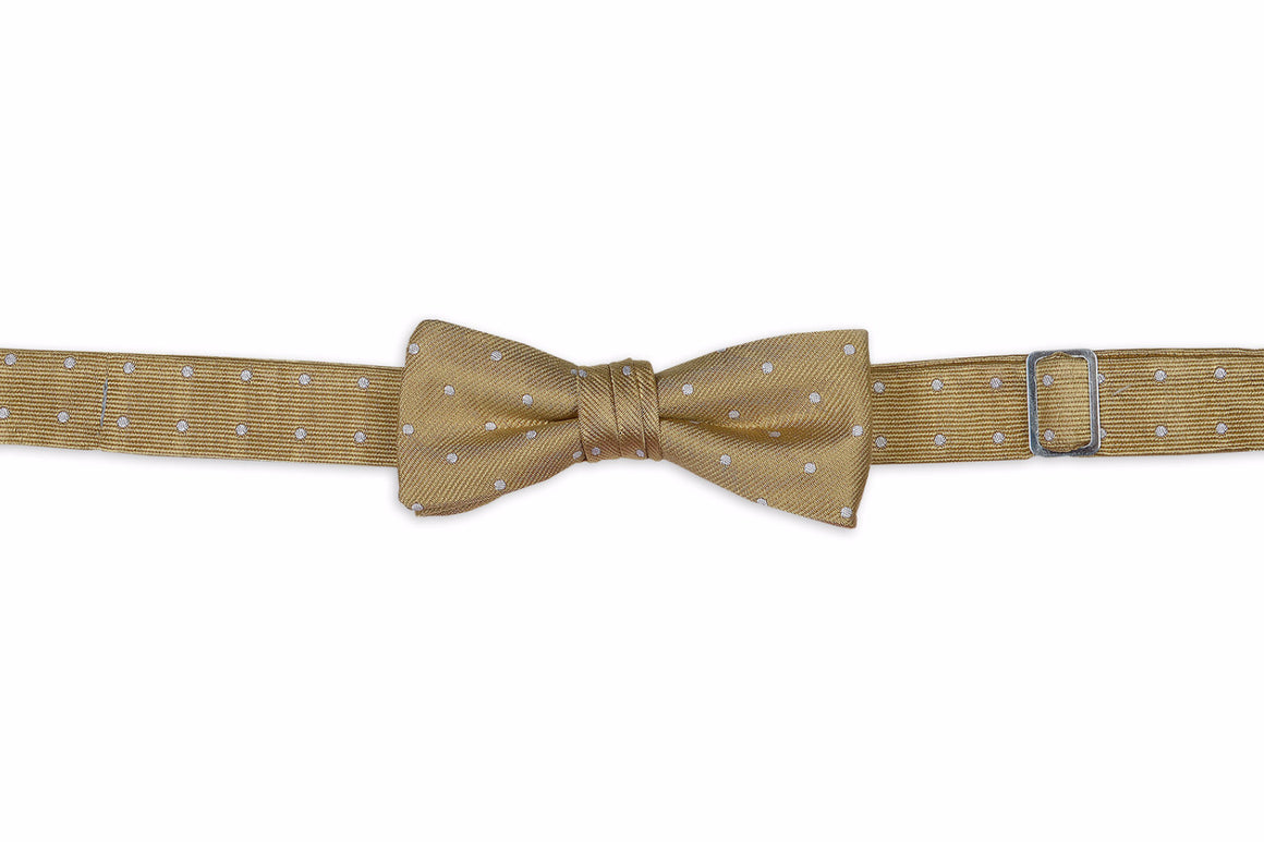 Champagne Toast Boy's Bow Tie