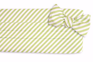 Spring Green Stripe Cummerbund Set