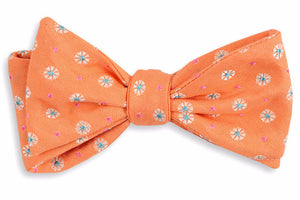 Orange Avery Bow Tie