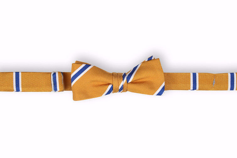 Noble Stripe Boy's Bow Tie - Gold