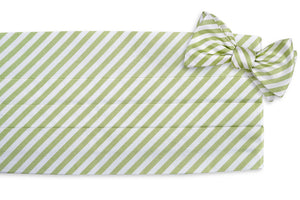 Oyster Roast Stripe Cummerbund Set - Marsh